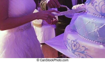 Light blue cake - Couple splits light blue wedding cake
