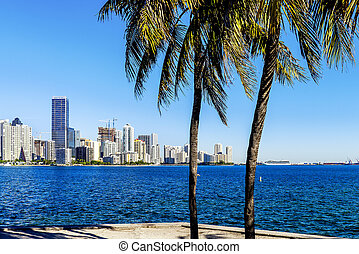 Miami Downtown skyline
