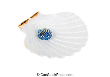 Glass pearl in ocean shell isolated