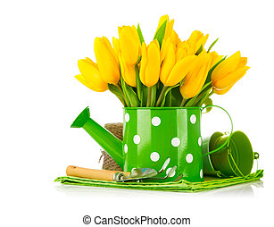 Spring flowers in watering can with garden tools