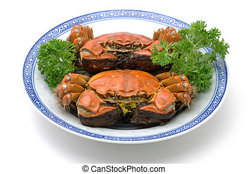 Steamed shanghai crabs on plate over white background