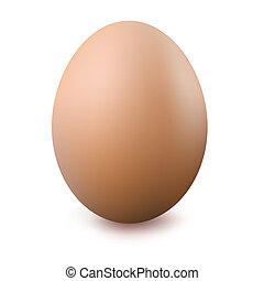 Egg - Close Up Of Egg, Isolated On White Background, Vector...