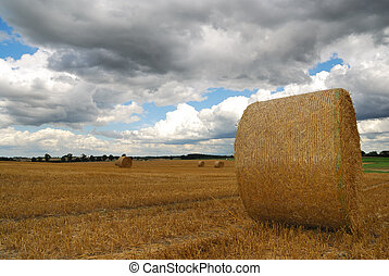 Bales of straw - Bavarian landscape with bales of straw