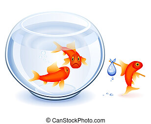 Goldfish emancipation - Goldfish moving from his fishbowl...