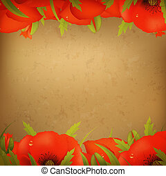 Vintage Red Poppy Border