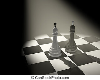 Two chess kings