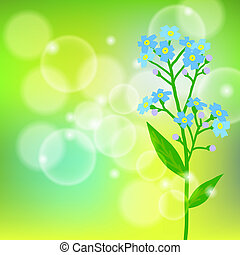Card with forget me not flower on sun light - Vector floral...