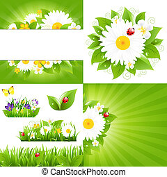 Set From Flower Backgrounds With Ladybug, Vector...