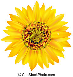 Smiling Sunflower, Isolated On White Background, Vector...
