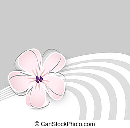 Cute flower background - Soft pink flower against light grey...