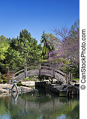 Wooden Bridge over pond in a Japanese Garden - Two geese...