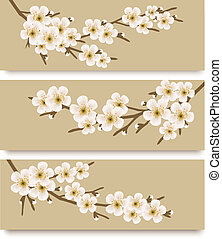 Three flower branch banners Vector