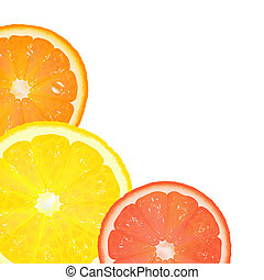 Citrus, Isolated On White Background, Vector Illustration
