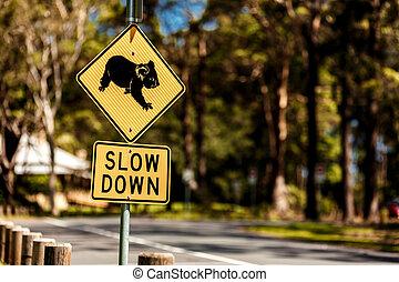 Koala Crossing sign - Roadside sign warning of Koalas being...
