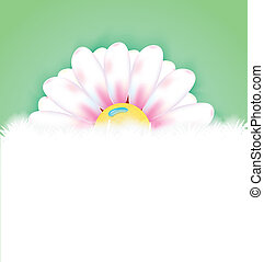 Spring flower with copy space