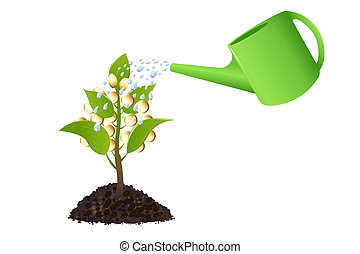 Money plant with watering can - Money tree with golden...
