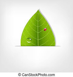 Eco Green Leaf Poster, With Gradient Mesh, Vector...
