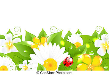 Flower Border With Ladybug, Isolated On White Background,...