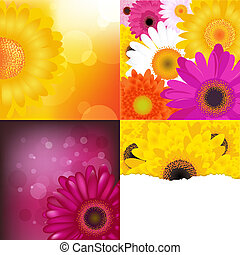 Flower Backgrounds Set