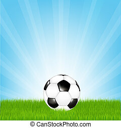 Football - Soccer Ball In Grass