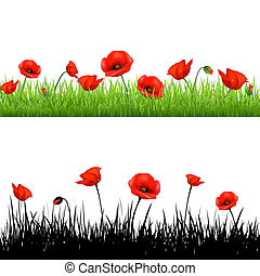 Border With Grass And Poppy