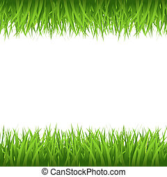 Grass Border, Isolated On White Background