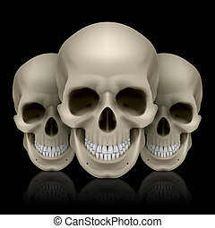 Three skulls - Illustration of three skulls with reflection...