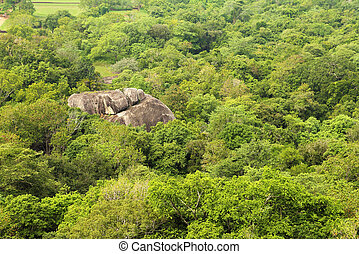jungle mountain aerial view