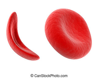 Sickle cell blood cell - Scientific illustration - sickle...