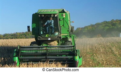 Combine Harvesting Soybeans 02 - Farmer combining soybean...