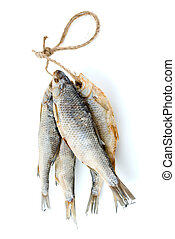 Five dried sea roach fishes on the rope isolated on the...