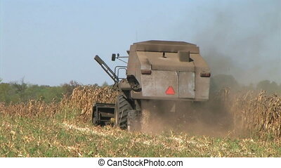 Combine Harvesting Corn 03 - Combine harvesting corn crop.