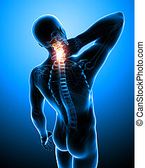 Anatomy of male neck pain on blue - 3d rendered illustration...