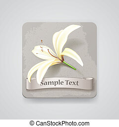 Realistic lily flower icon. Vector illustration, EPS10