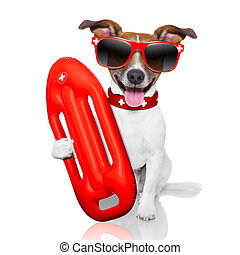 lifeguard dog - funny lifeguard dog with red lifesaver buoy...