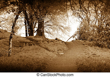 Sping road in sepia