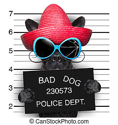 wanted dog - mugshot of very bad mexican wanted dog
