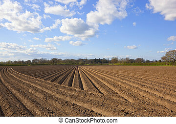 freshly plowed soil - patterns lines and texture of freshly...