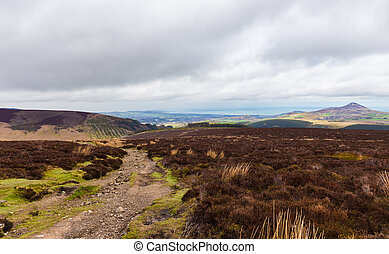 Wicklow Way trail crossing Wicklow Mountains