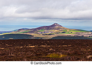Heathland and view of Sugar Loaf from Djouce