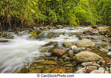 Rushing Mountain Stream - Fast flowing mountain stream near...