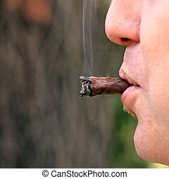 cigar smoked by an avid smoker 2 - cigar smoked by an avid...