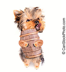 oktoberfest dog with beer barrel on a white background