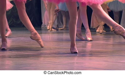Ballet Troupe - Feet in pointe dancing ballerinas on the...