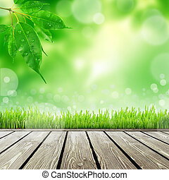Printemps, herbe, fond,  nature