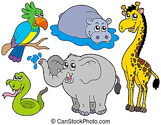 Wildlife animals collection - isolated illustration