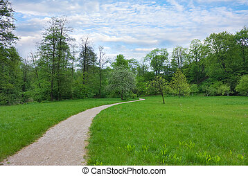 trail in the park, spring