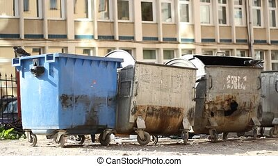 Slum Garbage Dumpsters - Dirty rusty dumpster with pigeons...