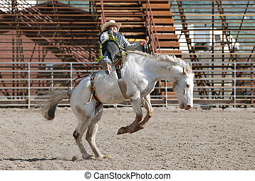 Bucking Horse - Young cowboy riding a white bucking horse in...