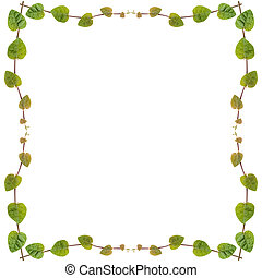 zielony, Pnącze, roślina, ułożyć